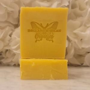 Sea Moss w/ Aloe Vera & Shea Butter Body Soap